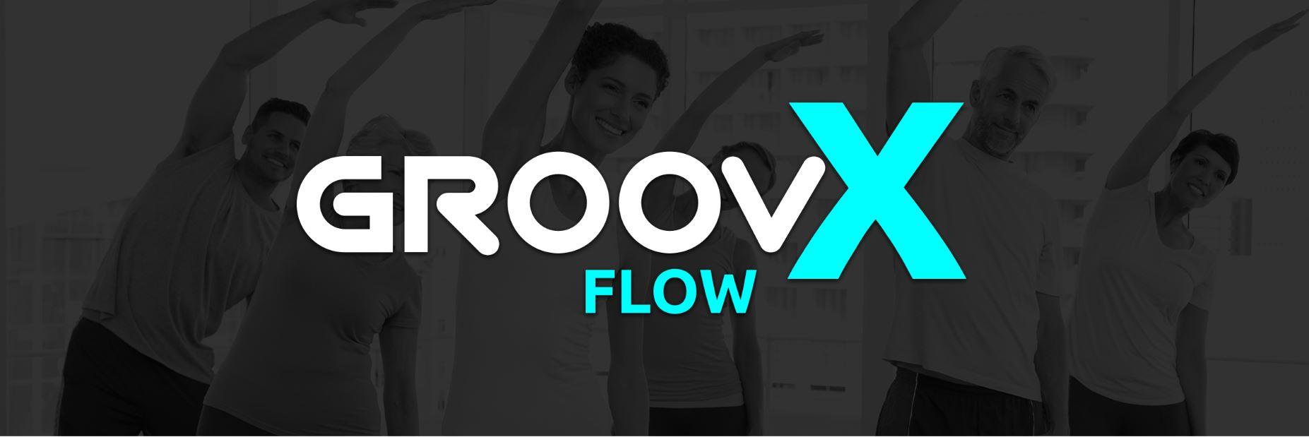 Groovx flow logo web
