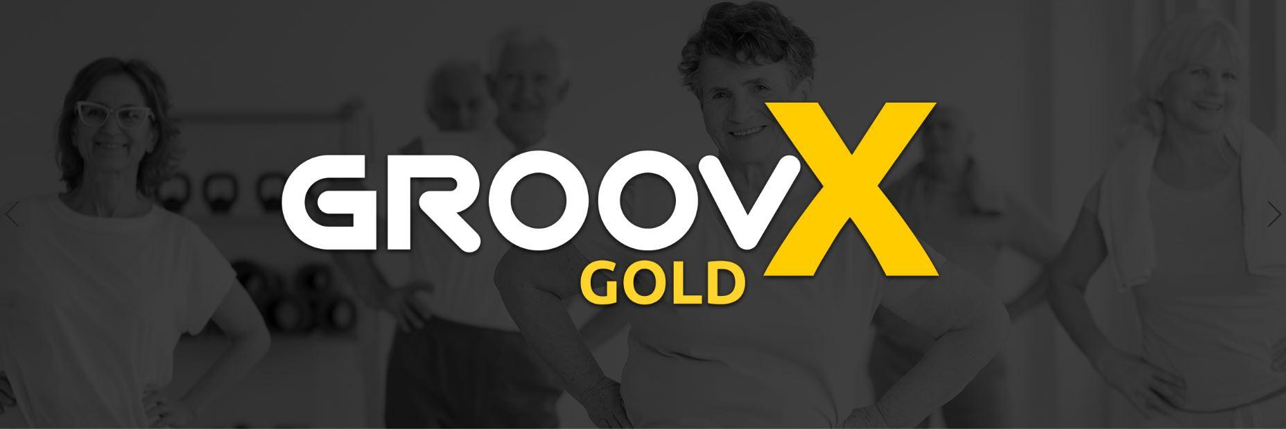 groovX Gold Logo web